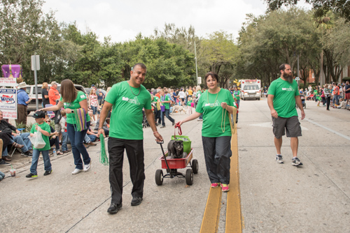 Team Mainstreet walking the parade route at the Mardi Gras dog parade in DeLand